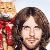 a-street-cat-named-bob